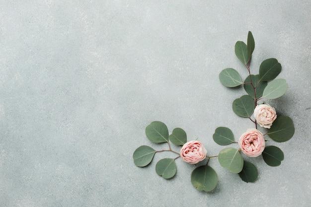 Het elegante concept met bladeren en rozen kopieert ruimte Gratis Foto