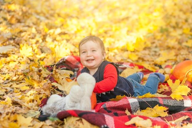 Het gelukkige baby spelen met teddybeer Gratis Foto