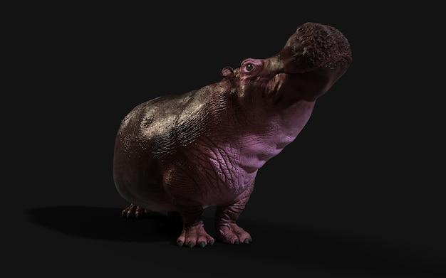 Het gemeenschappelijke nijlpaard (hippopotamus amphibius) poseren isoleren op donkere achtergrond met uitknippad. Premium Foto