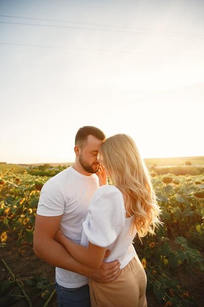 Het jonge liefdevolle paar kust in een zonnebloemgebied. portret van paar poseren in de zomer in veld. Gratis Foto
