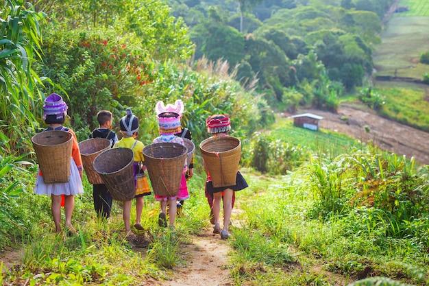 Het meisje en de jongen die een hmong-jurk dragen dragen een bamboemand op haar rug op het pad naar thei Premium Foto