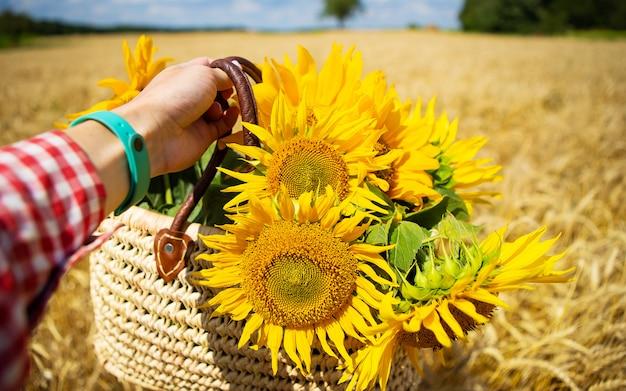 Het meisje houdt een boeket zonnebloemen in een strozak op een tarwegebied. Premium Foto