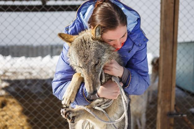 Het meisje knuffelt de grijze wolf in de openluchtkooi met wolven en honden Premium Foto
