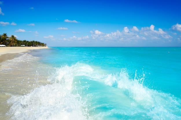 Het strand van playa del carmen in riviera maya Premium Foto
