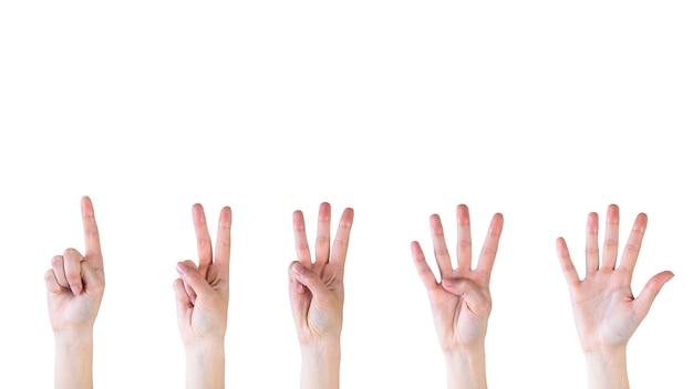 Het tellen van handen van één tot vijf op witte achtergrond Gratis Foto