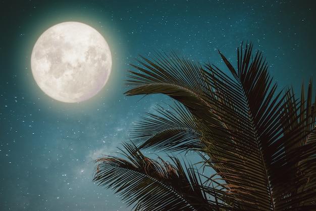 Het tropische tropische blad van de fantasiepalm met prachtige volle maan melkwegster in nachthemel, vintage kleurtintstijl. Premium Foto