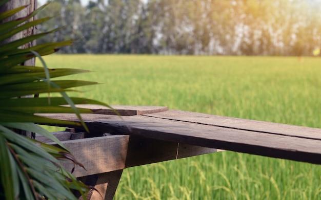 Het uitzicht op de rijstvelden met prachtige rijstvelden en de warmte van de zon. Premium Foto