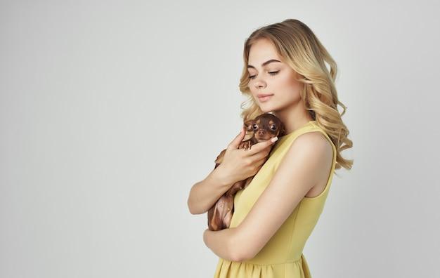 Het vasthouden van een rasechte hond chihuahua vriendschap knuffels huisdier. Premium Foto