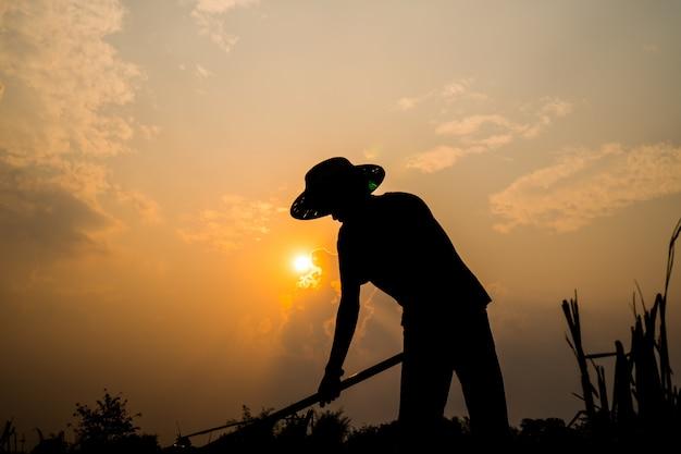 Het zwarte silhouet van een arbeider of tuinman holdingsspade graaft grond bij zonsondergang Premium Foto