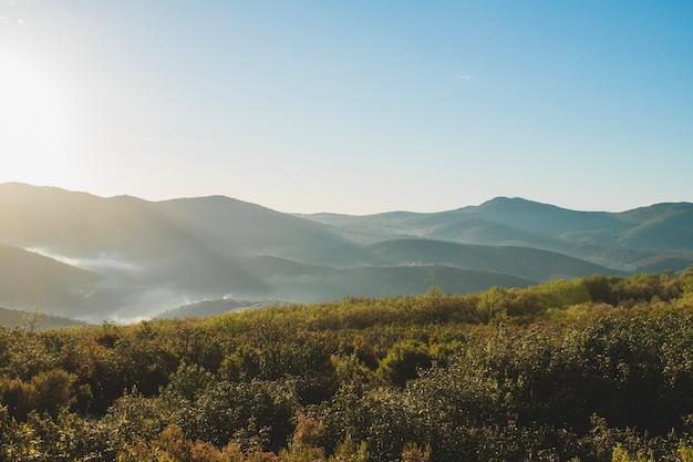 Heuvelachtig Tuin Ontwerp : Heuvelachtig landschap met gras in de voorgrond foto gratis download