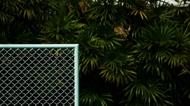 Hoek van blauw kooimetaal netto voorzijde de palm Premium Foto