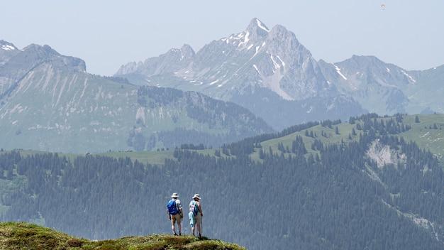 Hoge bergen en heuvels bedekt met bossen Gratis Foto