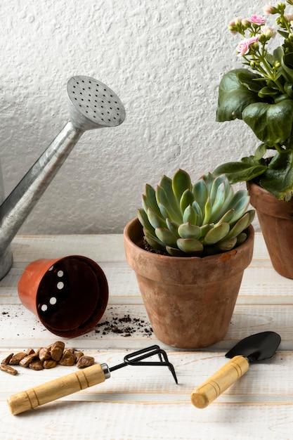 Hoge hoek bloempotten en gereedschappen Gratis Foto