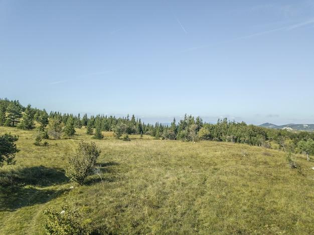 Hoge hoek die van een berg met bomen is ontsproten die onder de blauwe hemel in slovenië glanzen Gratis Foto