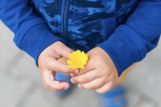 Hoge hoek die van een kind is ontsproten dat een gele bloem houdt Gratis Foto