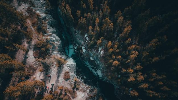 Hoge hoek die van een rivier is ontsproten die door een tropisch boshoogtepunt van bomen gaat Gratis Foto