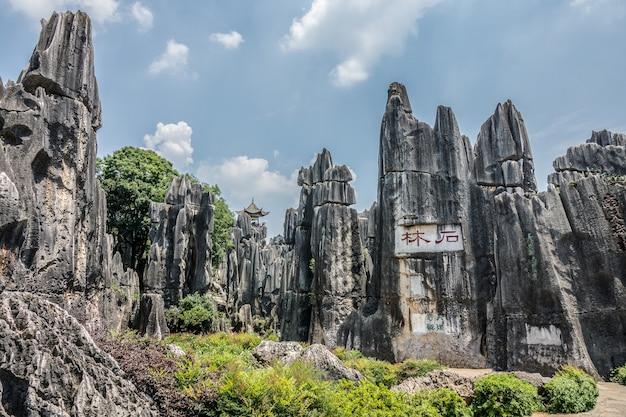 Hoge hoek die van het naigu stone forest scenic area in het nationaal park in kunming, china is ontsproten Gratis Foto