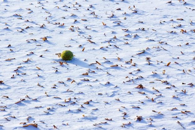 Hoge hoek schot van prachtige sneeuw texturen met gevallen droge bladeren Gratis Foto