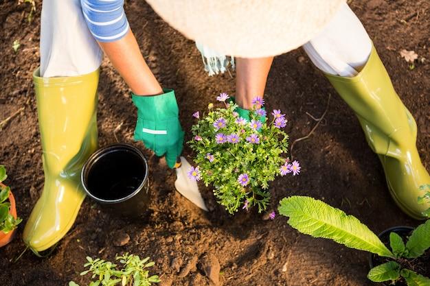 Hoge hoekmening van tuinman die troffel voor het planten bij tuin gebruikt Premium Foto