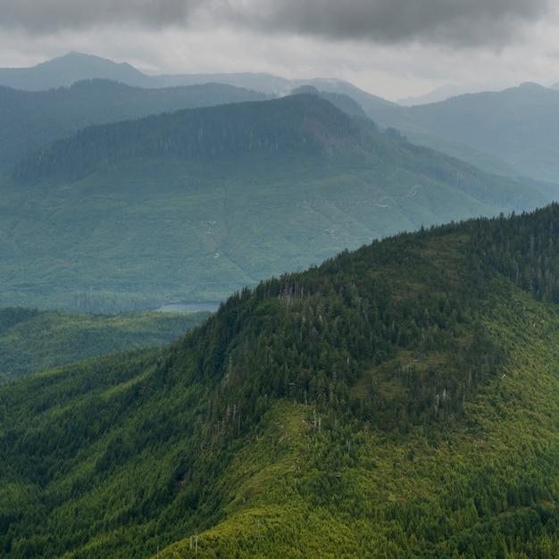 Hoge hoekmening van vallei met bergen, regionaal district skeena-queen charlotte, haida gwaii, gra Premium Foto