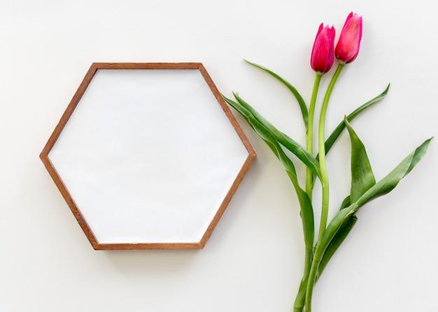 Hoge hoekmening van zeshoekige vormomlijsting en rode tulpenbloem over witte oppervlakte Gratis Foto
