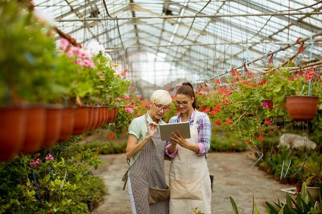 Hogere en jonge moderne bloemistvrouwen die een digitale tablet bekijken Premium Foto