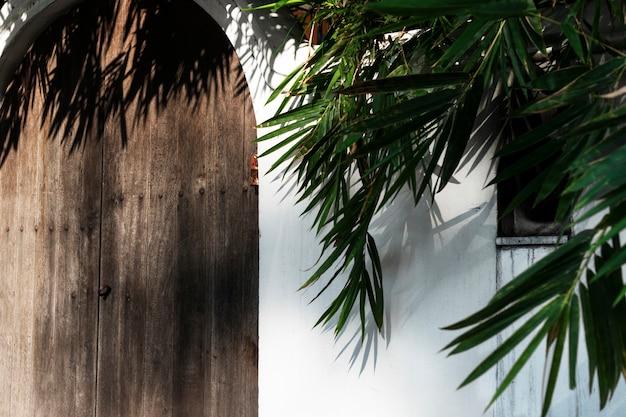 Home huis exterieur flora buiten plant foto gratis download