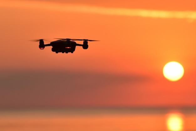 Hommel die in de zonsonderganghemel vliegt. Premium Foto