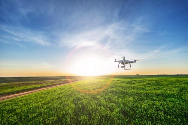 Hommel quadcopter op zoete maïs veld Premium Foto