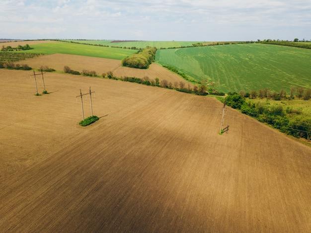 Hommelfoto van graangewassenlandbouwgrond tijdens de lentetijd Premium Foto