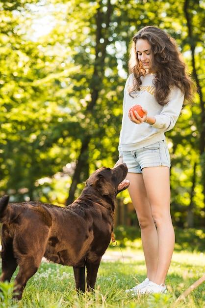 Hond die zich dichtbij de bal van de vrouwenholding in park bevindt Gratis Foto