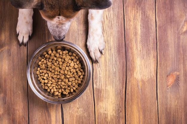 Hond en kom droog verbrokkeld voedsel Premium Foto
