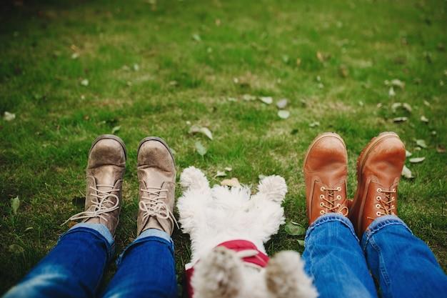 Hond en paar op het groene gras met bladeren. focus op voeten. mensen ontspannen na het wandelen. plaats voor inscriptie Premium Foto