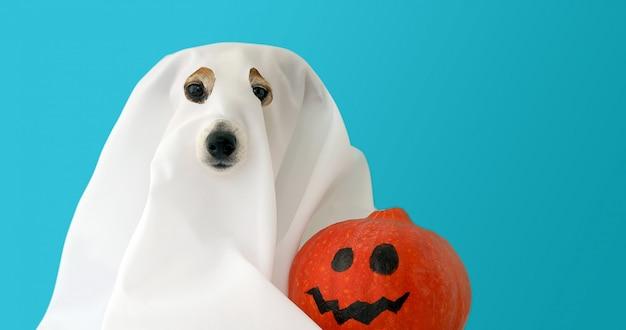 Hond verkleed als geest met oranje pompoen Premium Foto
