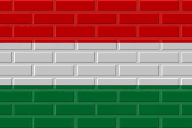 Hongarije baksteen vlag illustratie Premium Foto