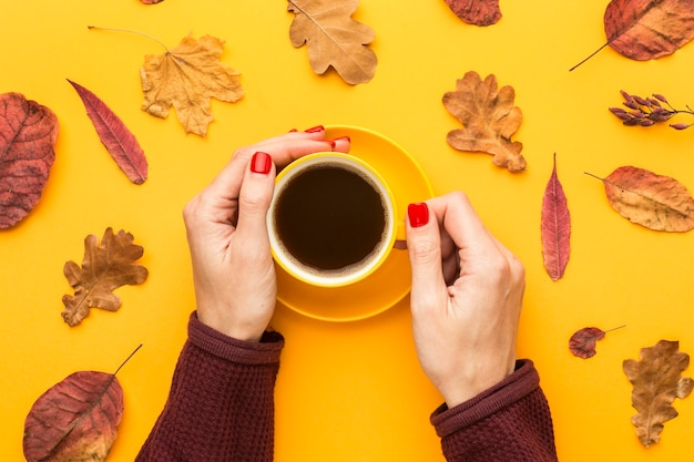 Hoogste mening van de koffiekop van de persoonsholding met de herfstbladeren Gratis Foto