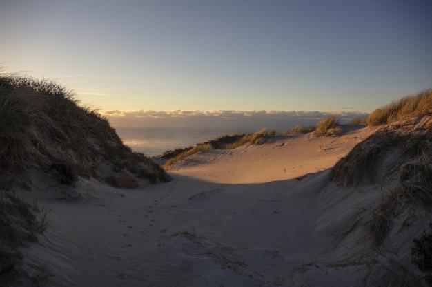 Horizontaal schot van duin aan de kust van galicië, spanje Gratis Foto