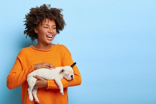 Horizontaal schot van gelukkige vrouw met krullend haar met brede glimlach, krijgt kleine puppy als cadeau, gekleed in oranje trui, staat tegen blauwe muur. schattige jonge vrouw houdt kleine franse bulldog. Gratis Foto