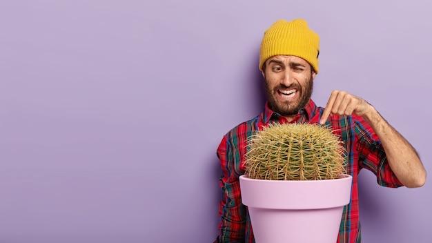 Horizontaal schot van knappe ongeschoren man wijst wijsvinger naar stekelige cactus, draagt casual geruit overhemd en gele hoed, vormt op paarse achtergrond met potplant, kopieer ruimte voor tekst Gratis Foto