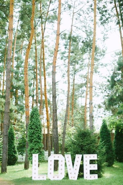 Hou van tekst decoratie zijaanzicht met het bos op de achtergrond Gratis Foto