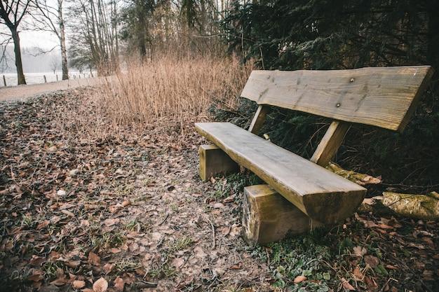 Houten bankje in een park omgeven door groen met een meer op de achtergrond tijdens de herfst Gratis Foto