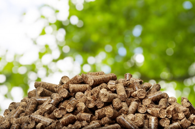 Houten korrels op een groene achtergrond. biobrandstoffen. Premium Foto