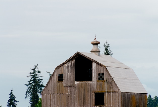Houten oude schuur in een bos met heldere witte hemel Gratis Foto