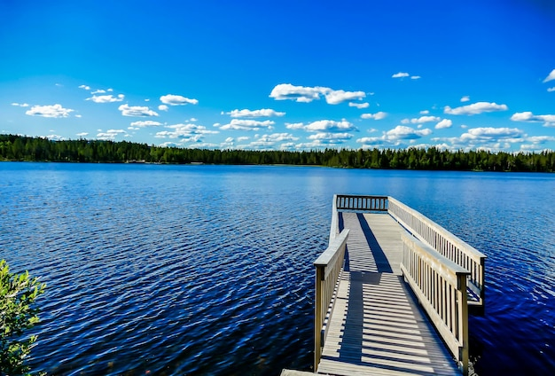 Houten pier over het prachtige meer met de bomen en de blauwe lucht op de achtergrond in zweden Gratis Foto