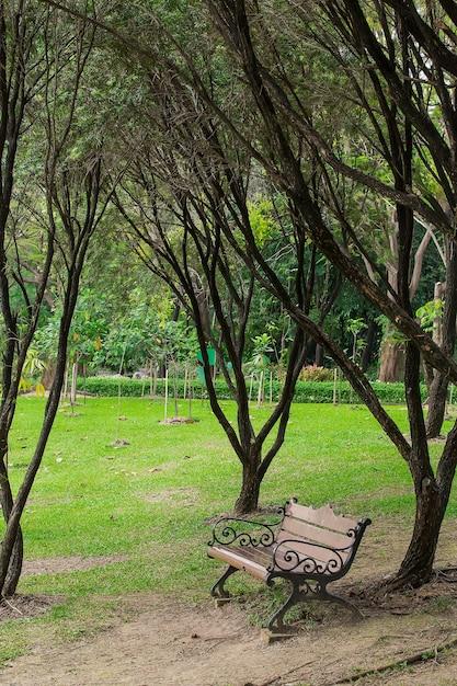 Houten Stoel Tuin.Houten Stoelen Op Gras In De Tuin Foto Premium Download