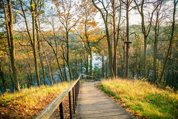 Houten trap in het regionale park in de herfst Premium Foto