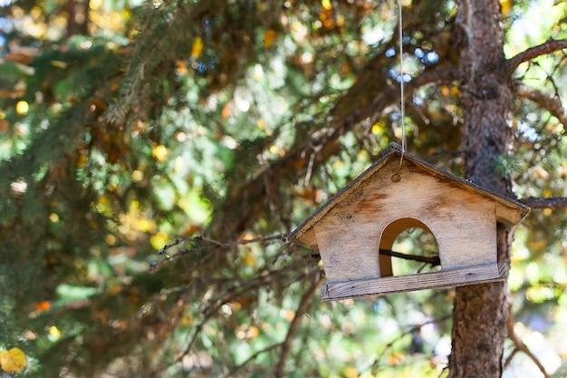 Houten vogelvoeder in het bos op een boom. Premium Foto