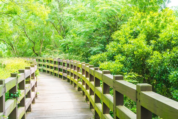 Houten wandelpad in de tuin bij cheonjeyeon falls, jeju island Premium Foto
