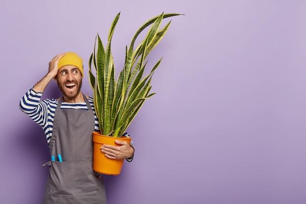 Huis tuinieren concept. positieve mannelijke bloemist wordt geconfronteerd met te veel direct zonlicht Gratis Foto