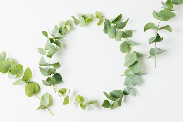 Huwelijkskader met bladeren wordt op witte achtergrond worden geïsoleerd gemaakt die Gratis Foto